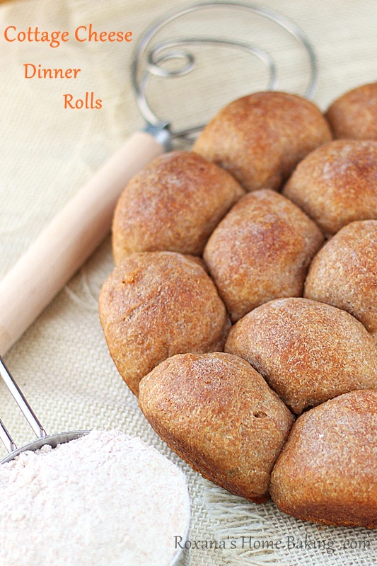 cottage cheese whole wheat dinner rolls | Roxanashomebaking.com