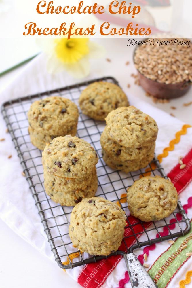 chocolate chip breakfast cookies recipe 1